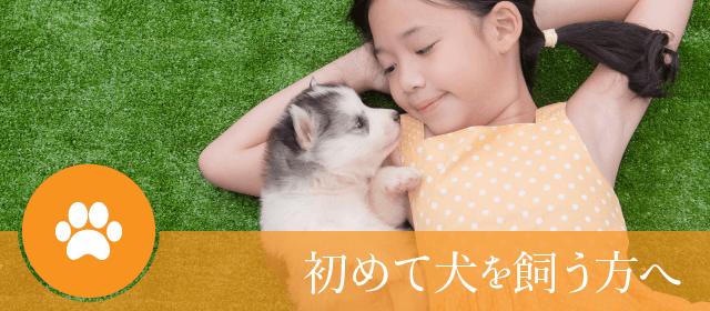 初めて犬を飼う方へ|ペットショップつくばビークラブ